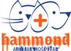 Vet In Tulsa | Hammond Animal Hospital Logo
